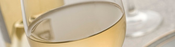 photodune-1556244-wine-s